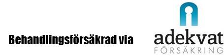försäkrad_bar